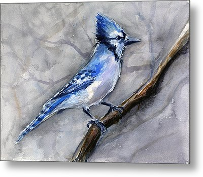 Blue Jay Watercolor Metal Print by Olga Shvartsur