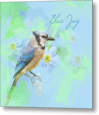 Metal Print featuring the photograph Blue Jay Watercolor Photo by Heidi Hermes