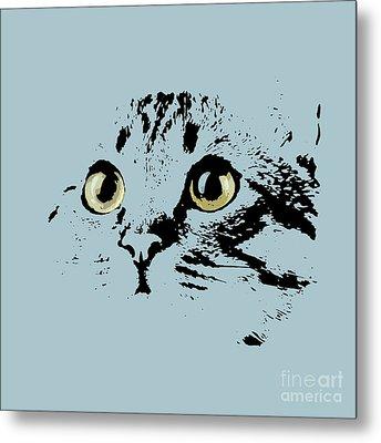 Blue Kitten Portrait Metal Print by Pablo Franchi