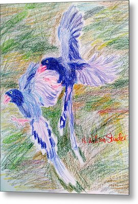 Blue Magpies Metal Print