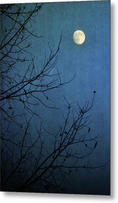 Blue Moon Metal Print by Susan McDougall Photography