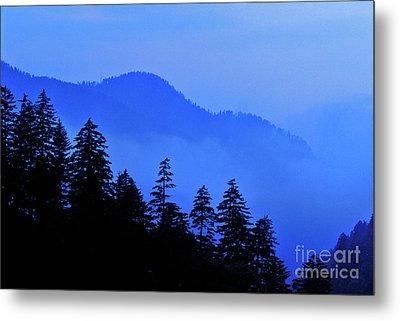 Metal Print featuring the photograph Blue Morning - Fs000064 by Daniel Dempster