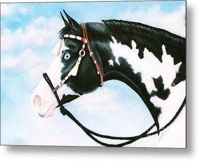 Blue Overo Sky Metal Print by Louise Green