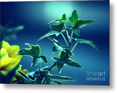 Metal Print featuring the photograph Blue Power  by Susanne Van Hulst