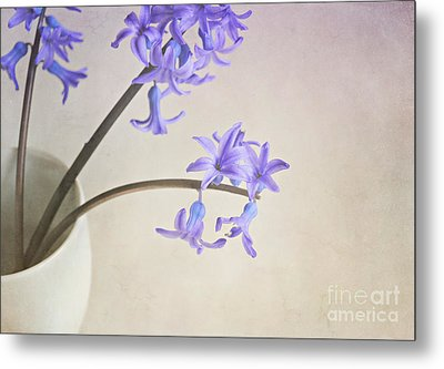 Blue Purple Flowers In White China Cup Metal Print by Lyn Randle