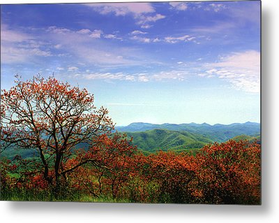 Metal Print featuring the photograph Blue Ridge Blessing by Jessica Brawley
