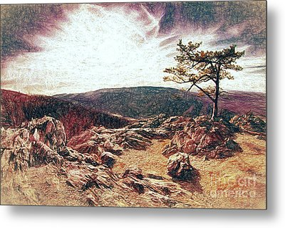 Blue Ridge Rocky Hilltop And Tree At Sunset Fx Metal Print by Dan Carmichael