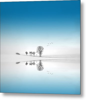 Metal Print featuring the photograph Blue Season by Philippe Sainte-Laudy