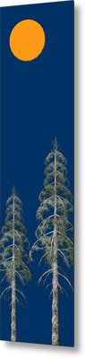 Blue Sky Metal Print by David Dehner