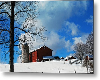 Metal Print featuring the photograph Blue Sky Farm by Lila Fisher-Wenzel