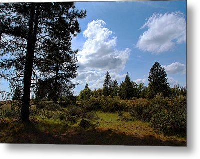 Metal Print featuring the photograph Blue Sky by Joanne Coyle