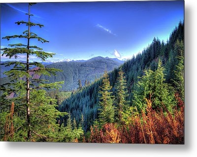 Blue Skykomish Metal Print by Spencer McDonald