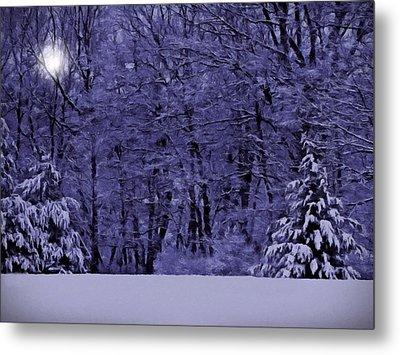 Metal Print featuring the photograph Blue Snow by David Dehner