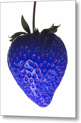 Blue Strawberry Metal Print by Tim Booth