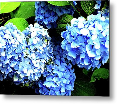 Blue Sunshine Metal Print