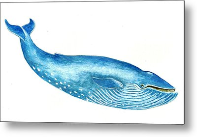 Blue Whale Metal Print by Michael Vigliotti