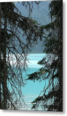 Metal Print featuring the photograph Blue Whisper by Al Fritz