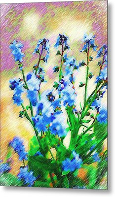 Metal Print featuring the photograph Blue Wildflowers by Donna Bentley