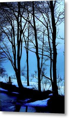 Blue Woods Metal Print by Karol Livote