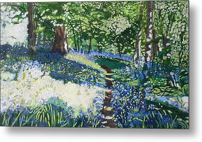 Bluebell Forest Metal Print by Joanne Perkins