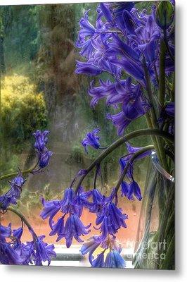 Bluebells In My Garden Window Metal Print