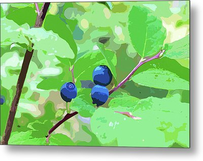 Blueberries Halftone Metal Print by Cathy Mahnke