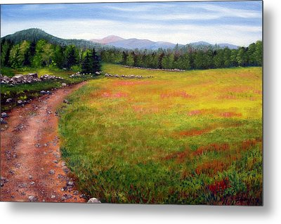 Blueberry Field 09 Metal Print by Laura Tasheiko