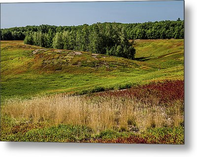 Blueberry Fields Forever Metal Print
