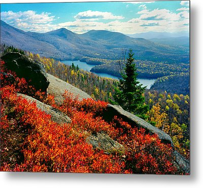 Blueberry Hill Metal Print