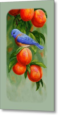 Bluebird And Peaches Iphone Case Metal Print by Crista Forest