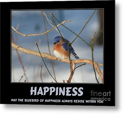 Bluebird Of Happiness Metal Print by Smilin Eyes  Treasures