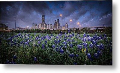 Bluebonnet Houston Metal Print