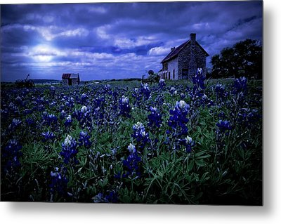 Metal Print featuring the photograph Bluebonnets In The Blue Hour by Linda Unger