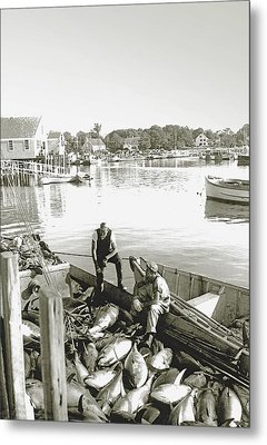 Bluefin Tuna At Barnstable Harbor Metal Print by Charles Harden