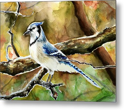 Bluejay Metal Print by Anna  Katherine