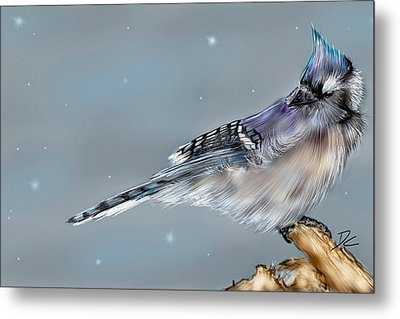 Metal Print featuring the digital art Winter Bluejay by Darren Cannell