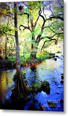 Blues In Florida Swamp Metal Print by Carol Groenen