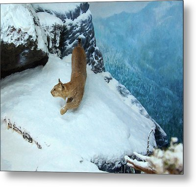 Metal Print featuring the digital art Bobcat On A Mountain Ledge by Chris Flees