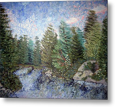 Bog River Morning Metal Print