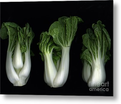 Bok Choy Metal Print by Christian Slanec