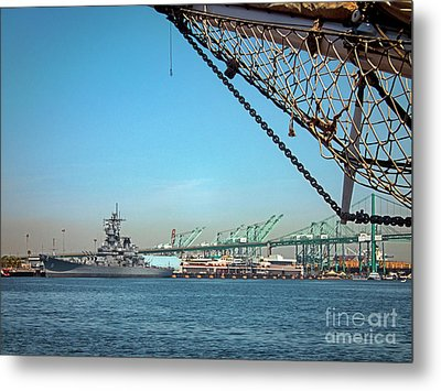 Bold And The Brave Metal Print by David Zanzinger