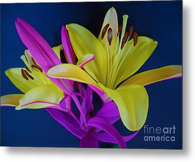 Metal Print featuring the photograph Bold Beautiful Flowers by Ray Shrewsberry