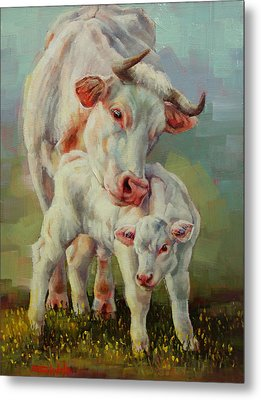 Bonded Cow And Calf Metal Print by Margaret Stockdale