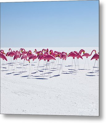Bonneville Salt Flats Usa Metal Print