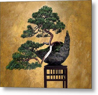 Bonsai 3 Metal Print