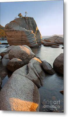 Metal Print featuring the photograph Lake Tahoe - Bonsai Rock by Francesco Emanuele Carucci