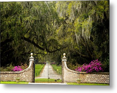 Boone Hall Plantation Metal Print by Eggers Photography