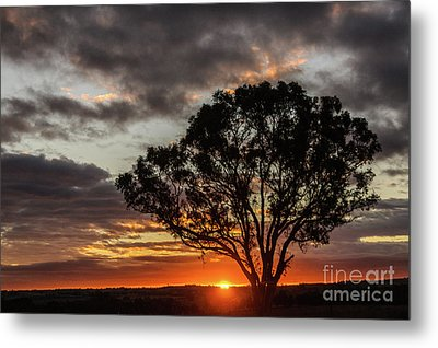 Boorowa Sunset Metal Print