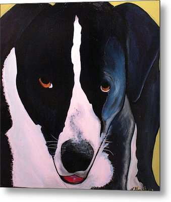 Metal Print featuring the painting Border Collie- Sasha by Laura  Grisham