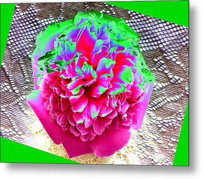 Bordered Peony Abstract Metal Print by Will Borden